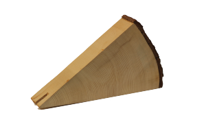 "2 ""Pie Slice"" wedge of red spruce"
